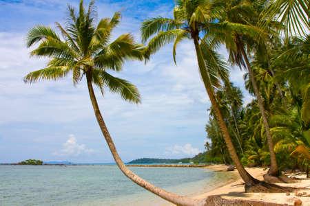 Serenity Shore Exotic Paradise Stock Photo - 17009967