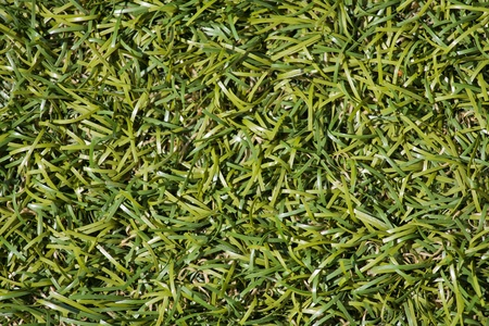 Green grass artificial texture and surface Stock Photo - 17029479