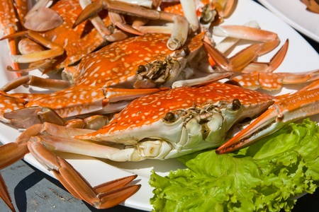Cooked crab Stock Photo - 17038387