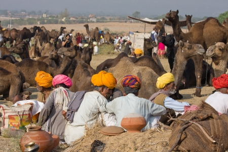 herder: PUSHKAR, INDIA - NOVEMBER 19: Pushkar Camel Mela (Pushkar Camel Fair) on November 19, 2012 in Pushkar, Rajasthan, India. This fair is the largest camel trading fair in the world. Editorial