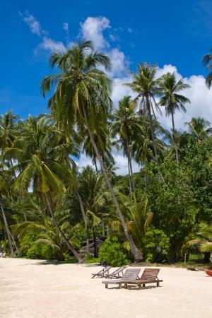 Beautiful tropical beach in island Koh Kood , Thailand photo