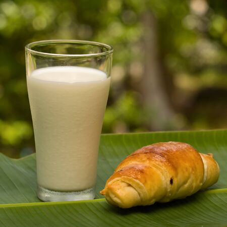Glass of milk and croissant on nature background photo
