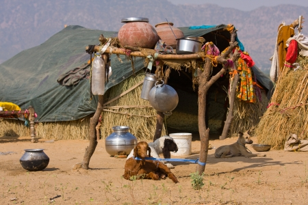 indian village: Lonely house in the desert near Pushkar, India Stock Photo