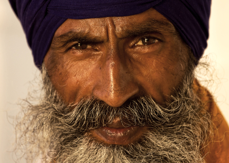 stocky: Portrait of Indian sikh man in turban with bushy beard Stock Photo