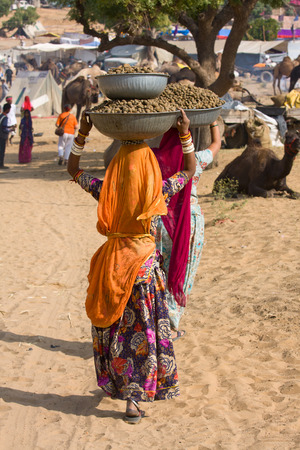 PUSHKAR, INDIA - NOVEMBER 20, 2012 : An unidentified Indian women are basins with camel poop on your head during Pushkar Camel Mela