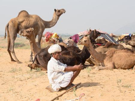 attended: Pushkar, India - 27 de octubre 2014: Hombre indio no identificado asistieron a la anual Pushkar Camel Mela. Esta feria es la mayor feria de comercio de camellos en el mundo.