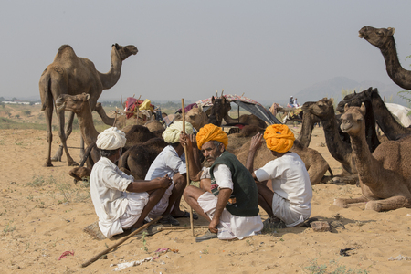 attended: PUSHKAR, INDIA - OCTOBER 27, 2014: Unidentified Indian men attended the annual Pushkar Camel Mela. This fair is the largest camel trading fair in the world. Editorial