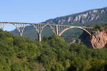 tara: Durdevica arched Tara Bridge over green Tara Canyon. Zabljak, Montenegro.