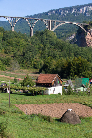 hill of tara: Durdevica arched Tara Bridge over green Tara Canyon. Zabljak, Montenegro.