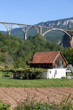 hill of tara: Home and arched Tara Bridge over green Tara Canyon. Zabljak, Montenegro. Stock Photo