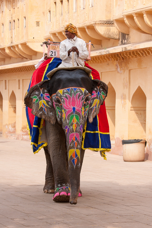 amber fort: JAIPUR, INDIA - NOVEMBER 10, 2012: Decorated elephant and elephant driver on the road at Amber Fort in Jaipur, Rajasthan, India Editorial