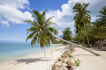 Beautiful tropical beach, coconut palm tree and blue sea water in island Koh Phangan , Thailand Stock Photo