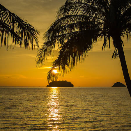 Coconut palm trees silhouette and sea water on sunset in tropical beach, Thailand Stock Photo