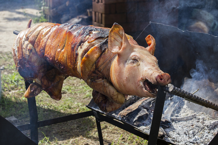 broiling: Roasting piglet , grilled pig at street food market in Koh Phangan, Thailand. Close up Stock Photo