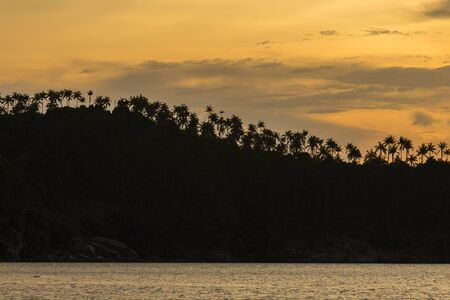 Silhouette of palm trees on the mountain during sunset at island Koh Phangan, Thailand