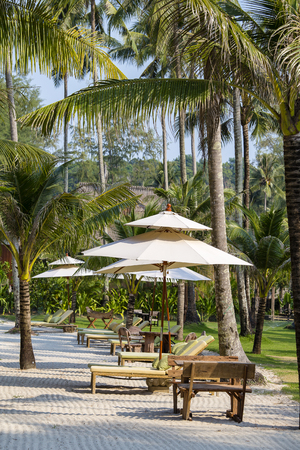 Summer landscape on tropical island in Thailand. Sand beach with sunbeds, umbrella and palm trees, Thailand