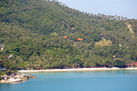 Tropical sand beach, coconut palm trees and sea water in island Koh Phangan, Thailand. Koh Phangan Island is one of the most popular destinations for tourists