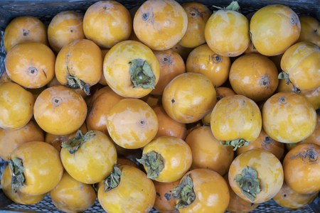 Ripe persimmons tiled on a market stall. Organic persimmon fruits in pile at local farmers market. persimmon background. Persimmons fruit at the farmers market in Tbilisi, Georgia 스톡 콘텐츠