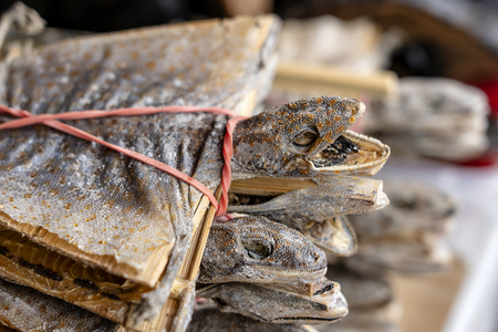 Dried gecko selling for medical purposes in chinese pharmacy. Traditional in east asia believe that gecko for medicine affects the lung and kidney meridians. Chinatown market in Singapore. Close up Standard-Bild