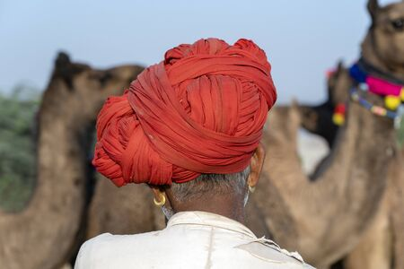 Indian men and herd camels in desert Thar during Pushkar Camel Mela near holy city Pushkar, Rajasthan, India. This fair is largest camel trading fair in the world