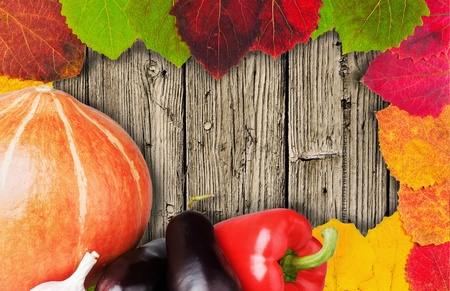 Autumn Still Life with Pumpkin and leaf litter Stock Photo - 10798693