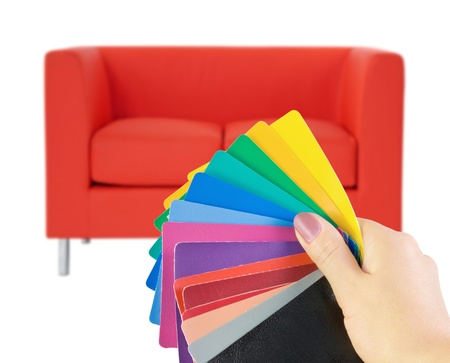 choice of skin samples for upholstery Stock Photo - 10798655