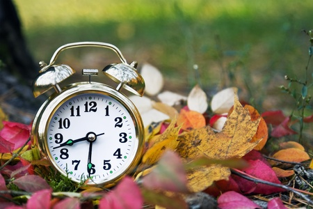 midst: alarm clock lies in the midst of autumn foliage