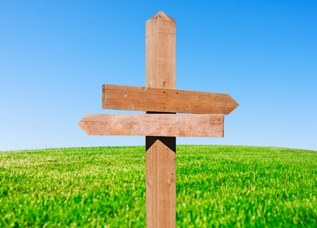 wooden post: wooden pointer on the green field