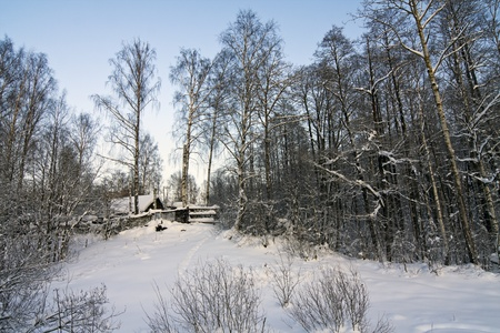 lonely house among the snow-covered winter forest photo