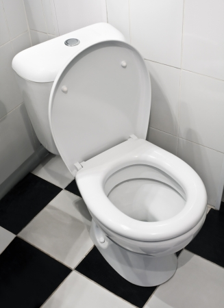 Closeup of toilet, lid open photo