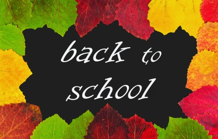 autumn leaves on a blackboard with the words back to school photo