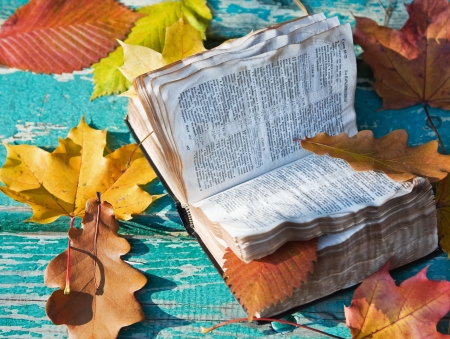 open the Bible and the fallen autumn leaves photo