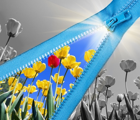Zipper open landscape with tulips and sun  Stock Photo - 15183784