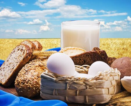 egg, flour, grain and milk, all baking homemade bread on the background of wheat field  photo