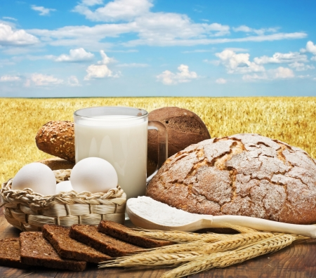fresh baked bread and ingredients to prepare against a wheat field photo