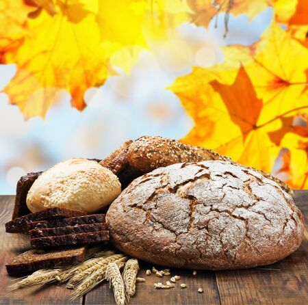 assortment fresh bread and wheat ears on a background of autumn leaves  photo