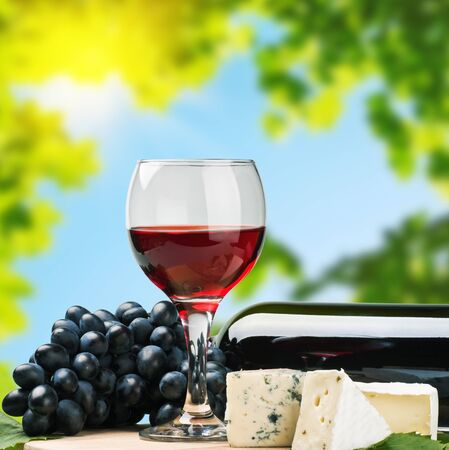 glass of red wine with grapes on a background of nature Stock Photo - 15281769