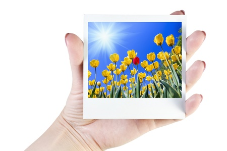 image of flowers in her hand isolated on white photo