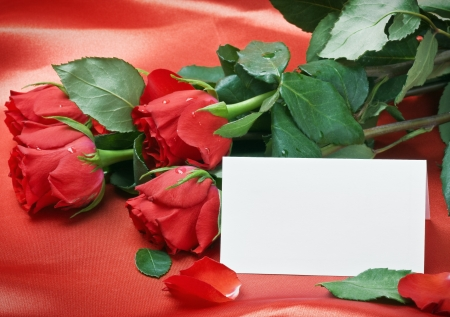 red roses and white card with a place for a congratulatory text on a red background photo