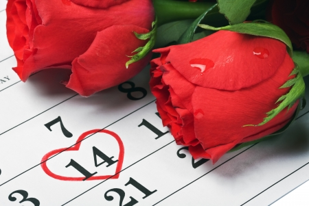 red roses lay on the calendar with the date of February 14 Valentines day Stock Photo