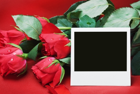 red roses and frame a congratulatory text on a red background Stock Photo - 17310793