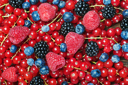fresh blueberries, currants, blackberries, cranberries and raspberries background photo