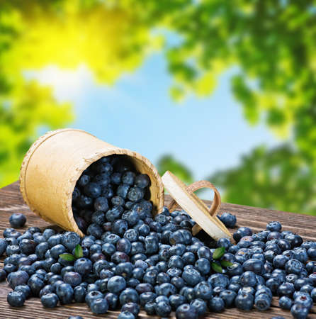 Blueberries in a basket is scattered on the wooden table photo