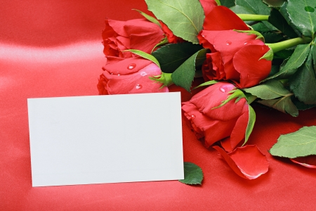 red roses and white card with a place for a congratulatory text photo
