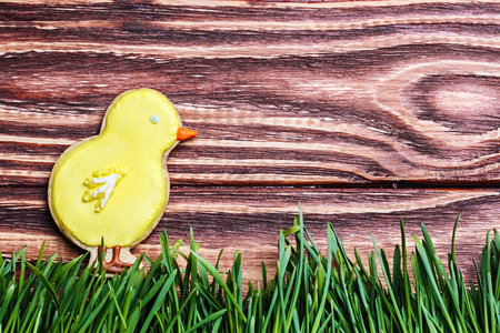 Easter homemade gingerbread cookie chicken over wooden table photo