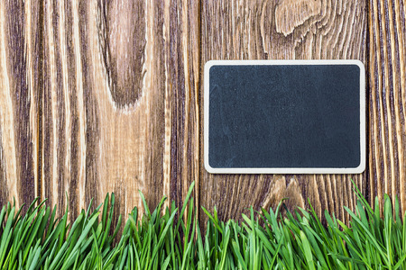 blackboard and green grass on a background of the fence photo