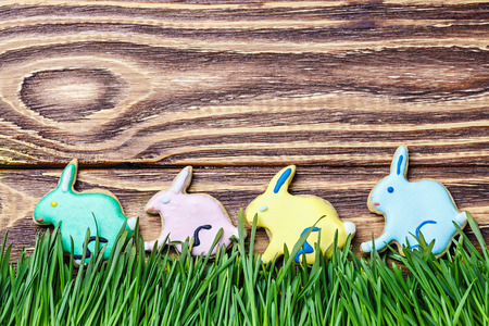 colorful bunnies cookies to day Happy Easter photo