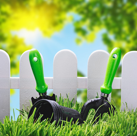 garden tools on the lawn of the house in a landscape photo