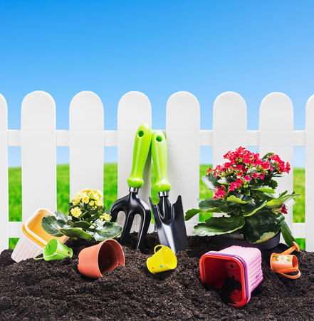 garden tools on the ground on a background of nature. Focus on tools photo
