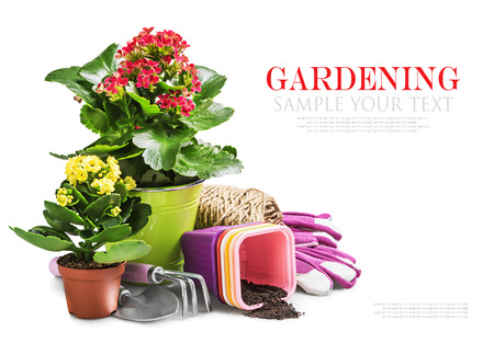 garden tools with flowers isolated on white background. The text serves as a model and can be easily removed. focus on tools photo